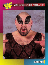 1995-1998 WWF Magazine Trading Cards
