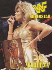 1997 WWF Coliseum Video Redemption Cards
