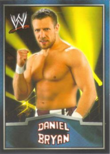 2012 WWE Topps Dog Tag Cards – Ringside Relic Edition