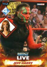 2013 TNA Tristar Impact Live