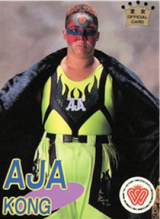 1996 AJW Official Cards Collection Vol. 1 (Japan)