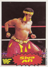 1985 WWF O-Pee-Chee Pro Wrestling Stars:Series 2