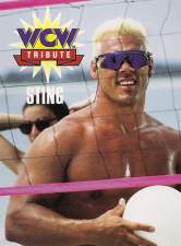 1995 WCW Cardz Main Event