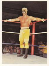 1988 NWA Wonderama