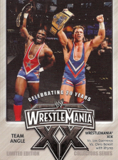 2004 WWE Fleer Wrestlemania XX PPV Promotional Cards