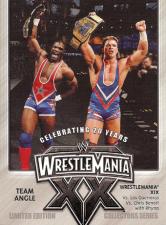 2004 WWE Fleer Wrestlemania XX PPV Promotional Cards