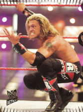 2007 WWE Topps Action