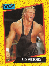 1991 WCW Impel Trading Cards