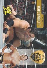 2010 WWE Magazine Future Hall of Fame Cards