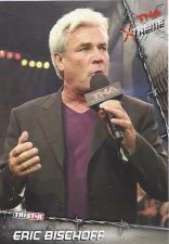 2010 TNA Tristar X-treme