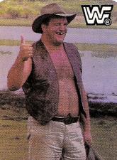 1987 WWF Hostess Wrestlemania IV Wrestling Cards