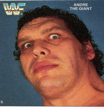 1988 WWF Quaker Dips Collector Cards