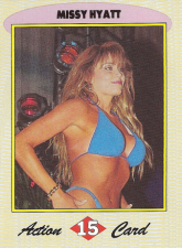 1992-1993 WCW Magazine Collectors Trading Cards