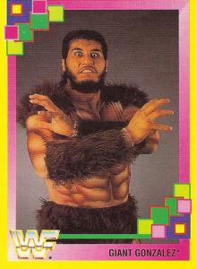 1993 WWF Merlin Wrestling Cards (Germany)