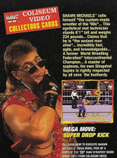 1994 WWF Coliseum Video/Akklaim Strategy Tips