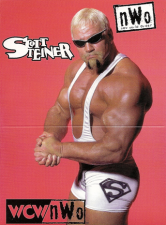 1998 WCW/NWO Real Action Pop up Cards