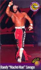 1998 WCW/NWO Talking Portrait Cards