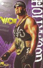 1999 WCW/WWF Authentic Images Signature Series