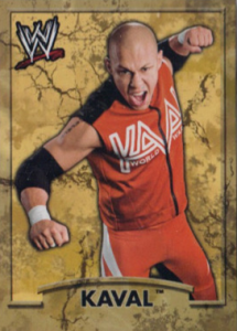 2011 WWE Topps Dog Tag Cards – Ringside Relic Edition