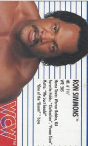 1990-1991 WCW Galoob Figure Cards