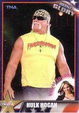2013 TNA Tristar Impact Glory