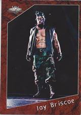 2015 IPW Trading Cards