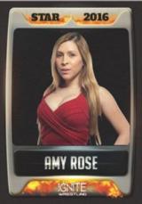 2016-2017 Ignite Wrestling Cards