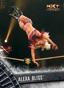 2016 WWE Topps NXT