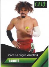2019 Cactus League Wrestling Trading Cards