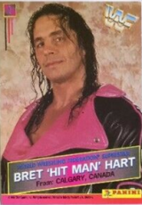 1995 WWF Panini Wrestling Cards (South Africa)
