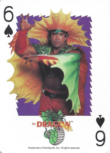 1991 WWF Playing Cards