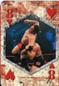 2010 TNA Playing Cards