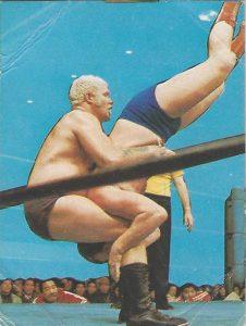 1976 Yamakatsu All Japan Pro Wrestling (Japan)