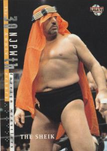 2002 BBM Pro Wrestling (Japan)
