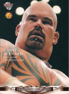 2006-2007 BBM Pro Wrestling (Japan)