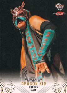 2008-2009 BBM Dragon Gate Pro Wrestling (Japan)