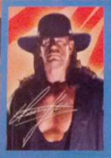 2012 WWE PMG Valentine's Day Cards