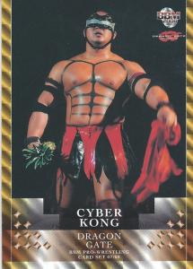 2007-2008 BBM Dragon Gate Pro Wrestling (Japan)