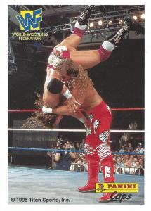 1995 WWF Panini Caps Instructions Cards
